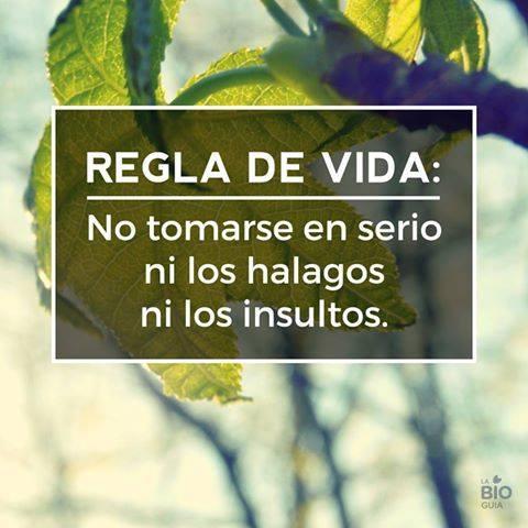 Regla de vida: no tomarse en serio ni lo halagos ni lo insultos...