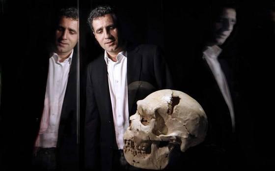 imagen_museo_burgos_evolucion_humana_craneo_miguelon