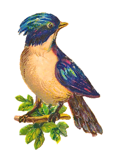 bird tree image clip art