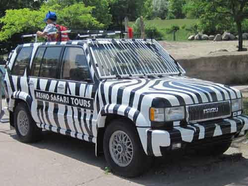 Kesho Safari Tours