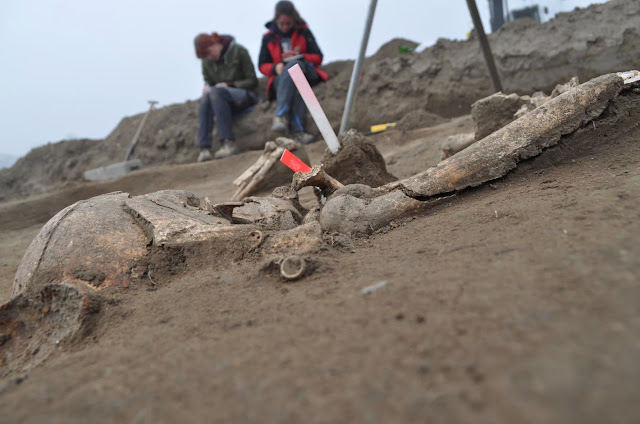 Archaeologists dig up mass grave of soldiers crushed by Napoleon's troops