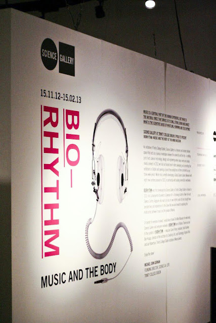 Biorhythm Exhibit The Mind Museum