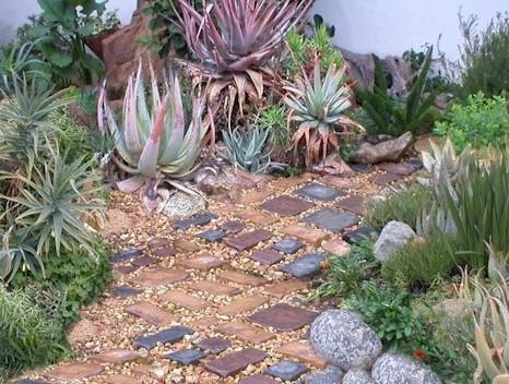 Gardening in africa a week of gardening ideas for South african garden designs