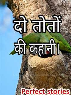Motivational storieS in hindi with moral - दो तोतों की कहानी।