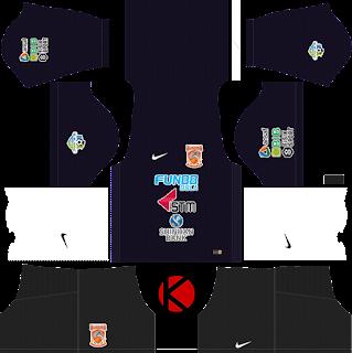 borneo-fc-nike-kits-2018-%2528goalkeeper-away%2529