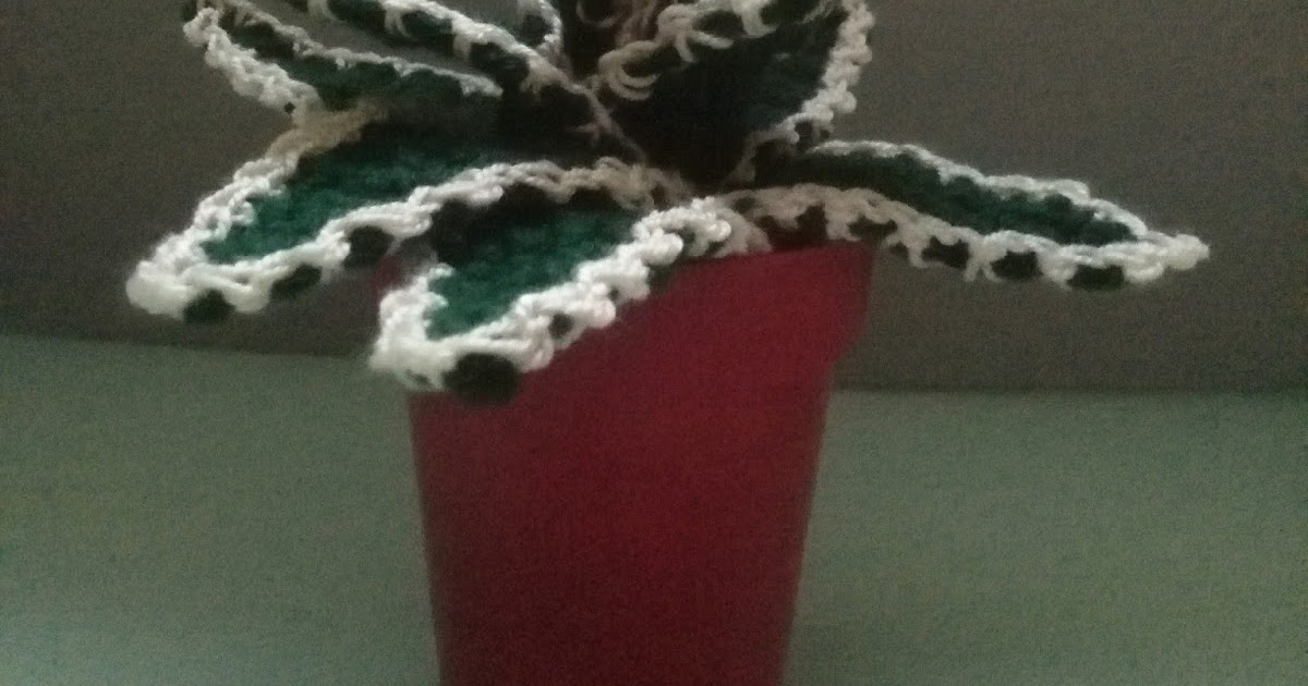 Tutorial de crochet/gancillo, cactus estrellado - YouTube | Cactus ... | 630x1200