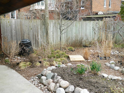 Toronto Riverdale spring garden clean up before by Paul Jung Gardening Services