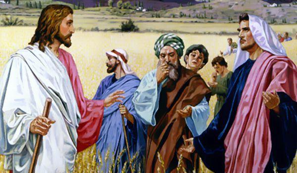 PALAVRA DO SENHOR - JESUS É SENHOR DO SÁBADO - MATEUS 12