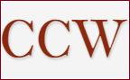 virtual CIO virtualCIOCCW Consulting