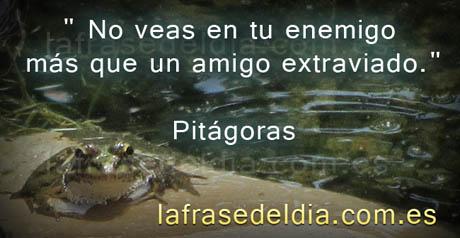 Frases de Pitágoras