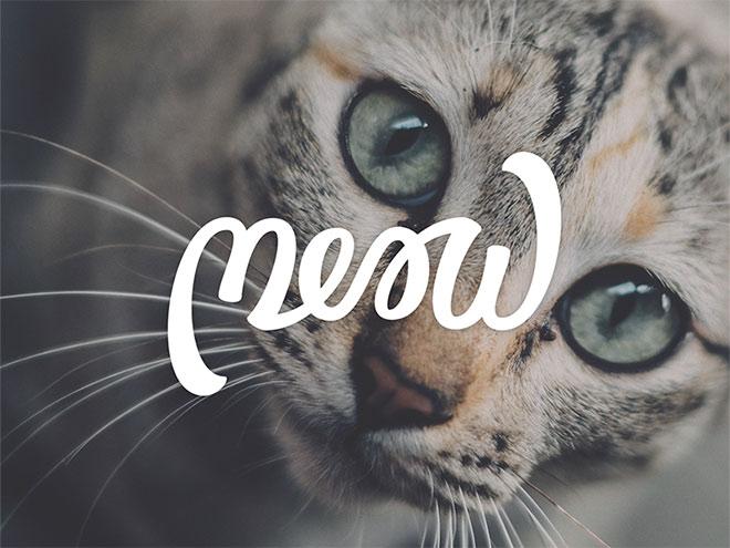 Pengertian Ambirgam, Inspirasi Desain Logo Ambigram - Meow Ambigram