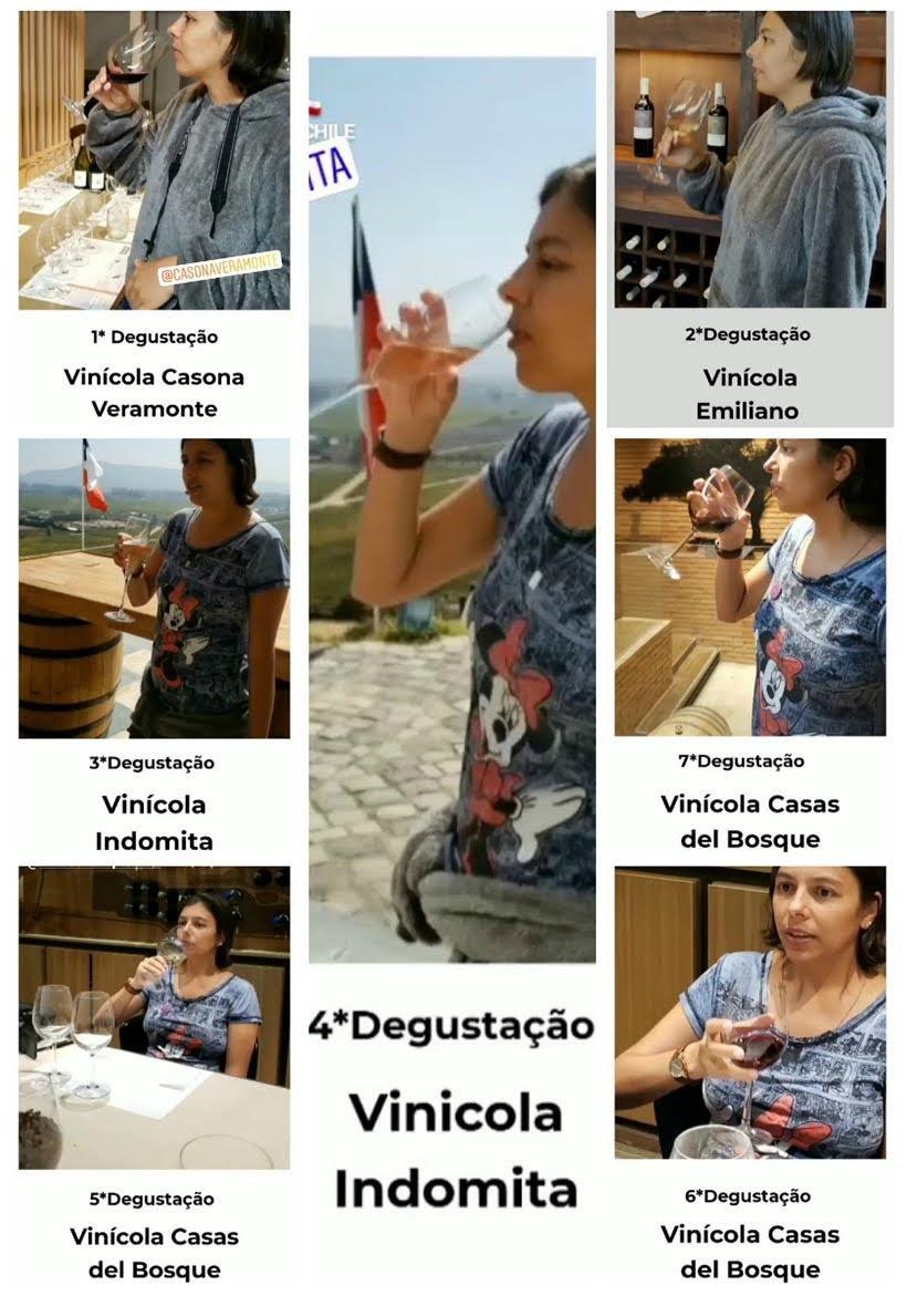 Degustações de vinhos nas Vinícola chilenas do Valle Casablanca