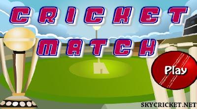 Online Cricket Match