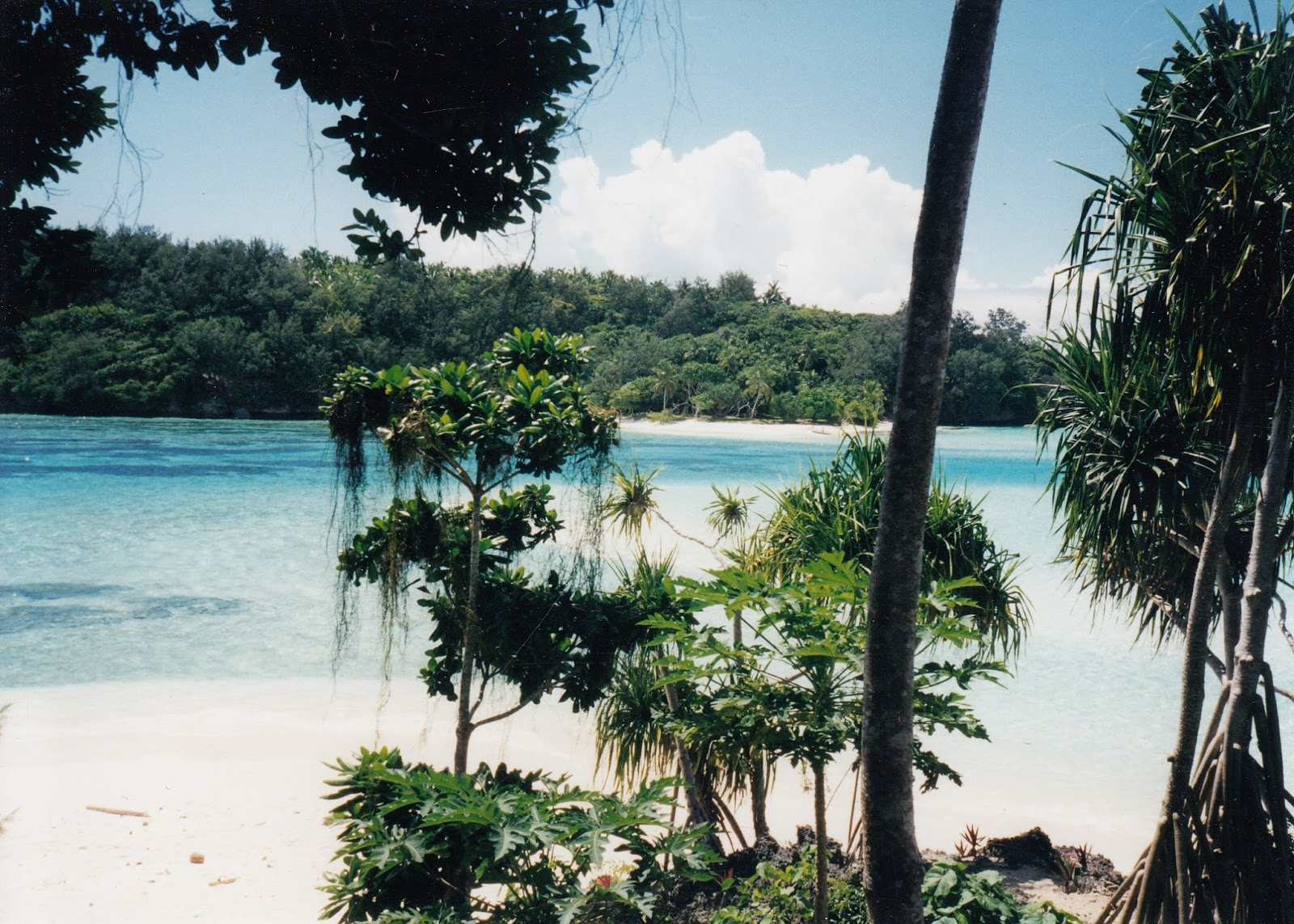 Tonga, where I visited back in 1999 as a keen-eyed medical student; a culture so different from my own.