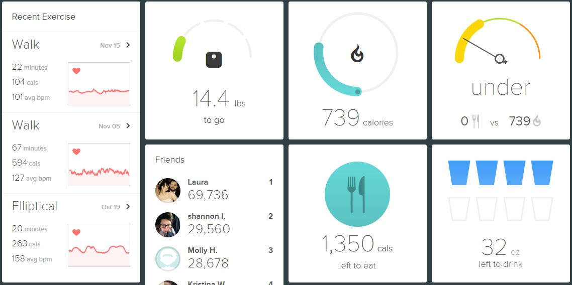 Example of FitBit dashboard
