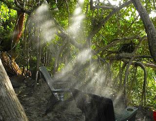 misting station, spa payaná, nature spa, #payabay, #payabayresort, #payabayresort,