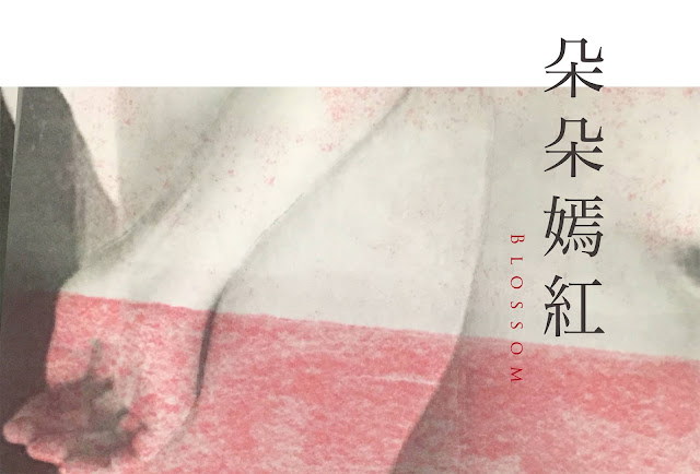 釜山國際影展,釜山影展,朵朵嫣紅,藍憶慈導演,日本原裝防音型發電機,大成電機株式會社,柴油引擎發電機