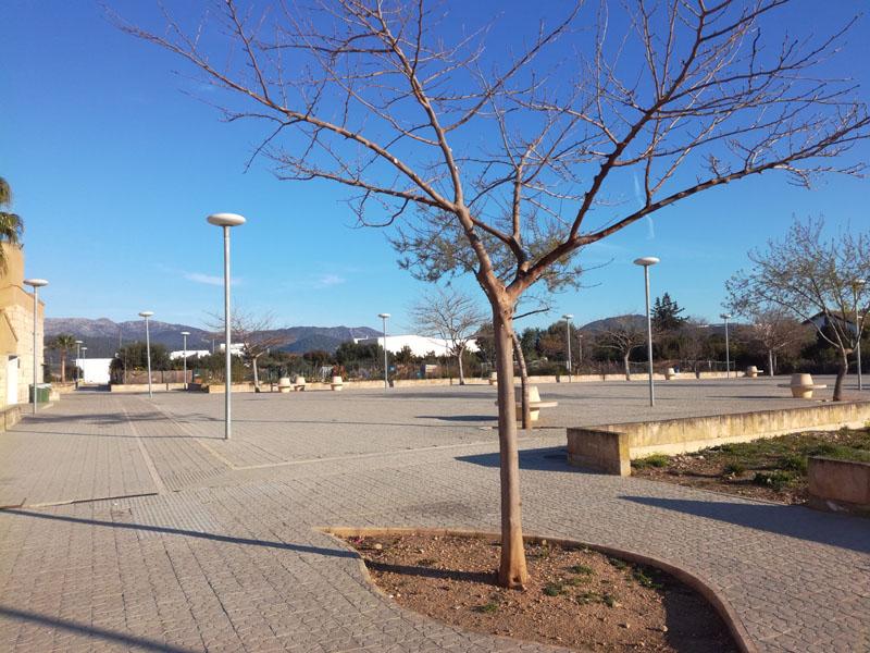 Orti urbani a Maiorca