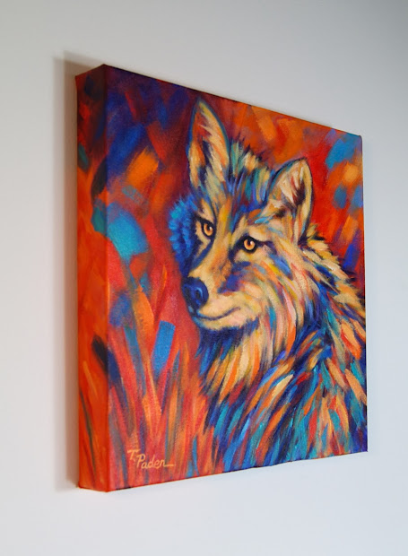 Coyote Colorful Art Paintings