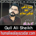 http://www.humaliwalayazadar.com/2017/09/gull-ali-sheikh-nohay-2018.html