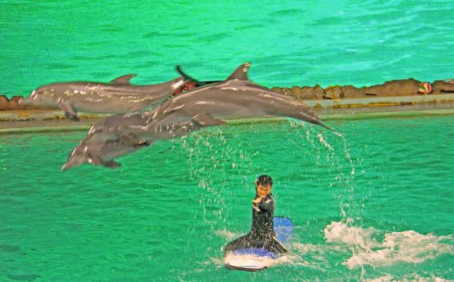 Gambar Ocean Dream Ancol Di DKI Jakarta