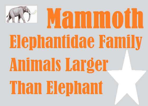 Mammoth, Elephantidae or Long Haired Elephants, how Disappeared from Earth