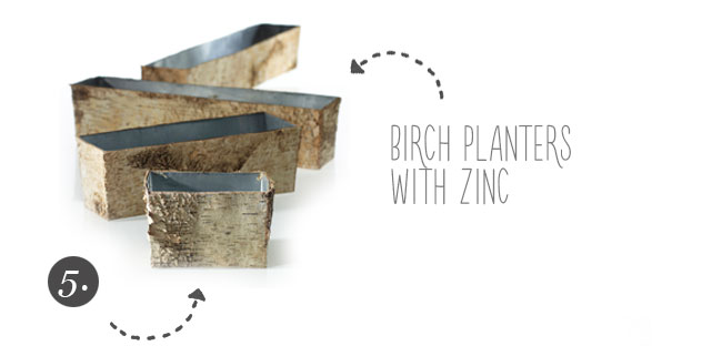 Birch Wood Planters and Containers from Accent Decor