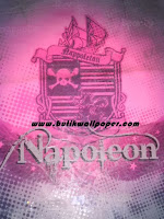 http://www.butikwallpaper.com/2012/07/napoleon.html