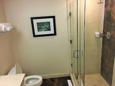 Stand-in shower, toilet, towels on rack