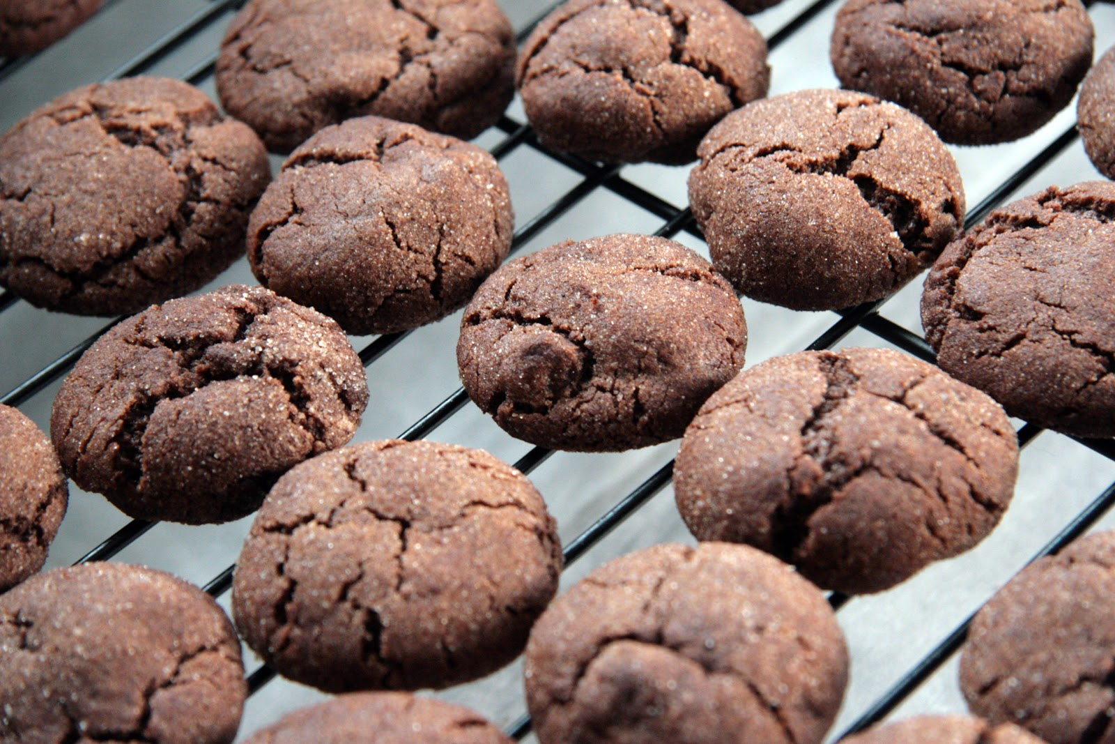 Spiced chocolate cookies on cooling rack