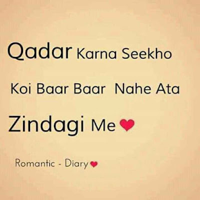 Romantic Diary Fizz - Qadar Karna Seekho Koi Baar Baar Nahe Aata Zindagi Me