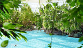 Center Parcs buchen