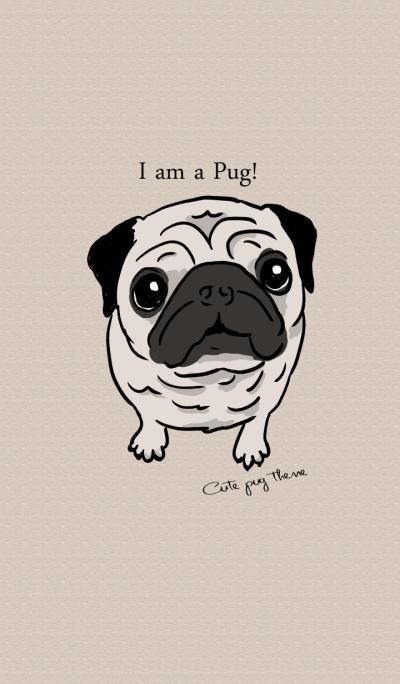 Cute pug theme