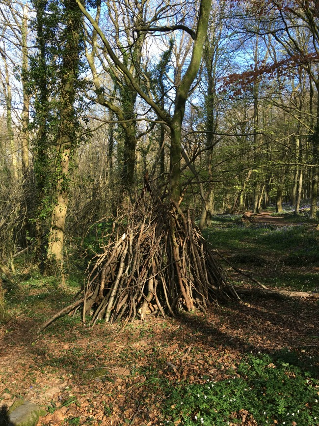 a pile of sticks making a den