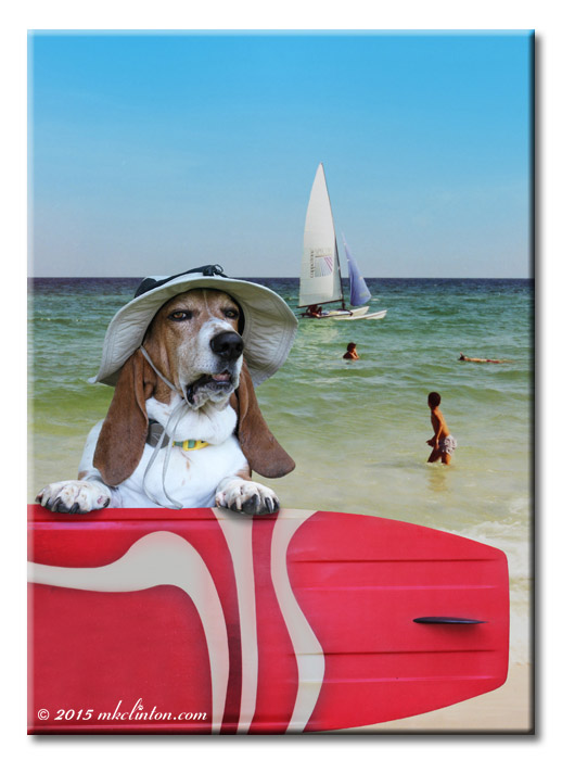 Basset Hound with red surf board on beach