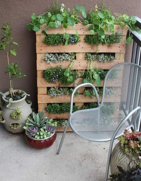 how to start an urban garden