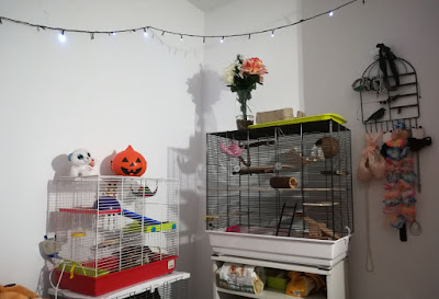 Pet room, jaula para hamster y rata