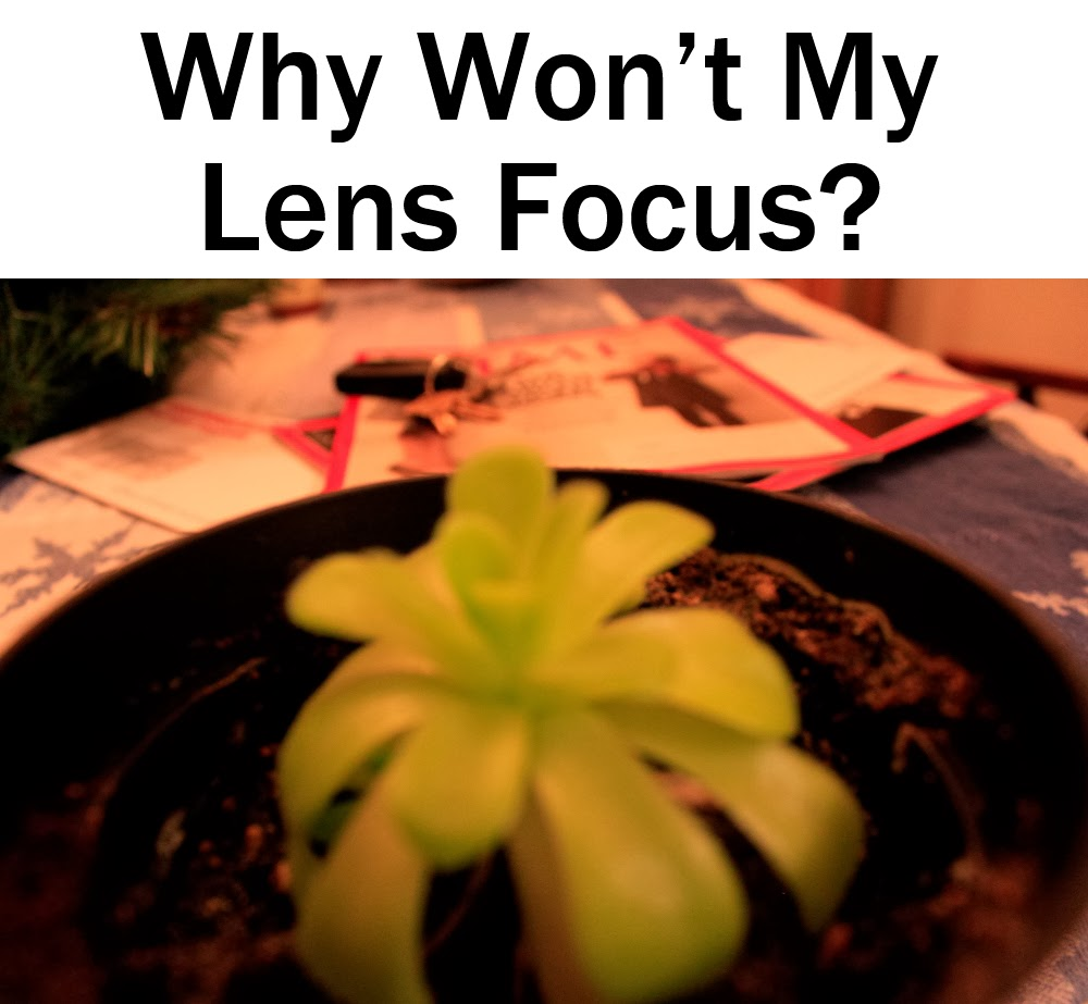Why Won't My Lens Focus?  Boost Your Photography