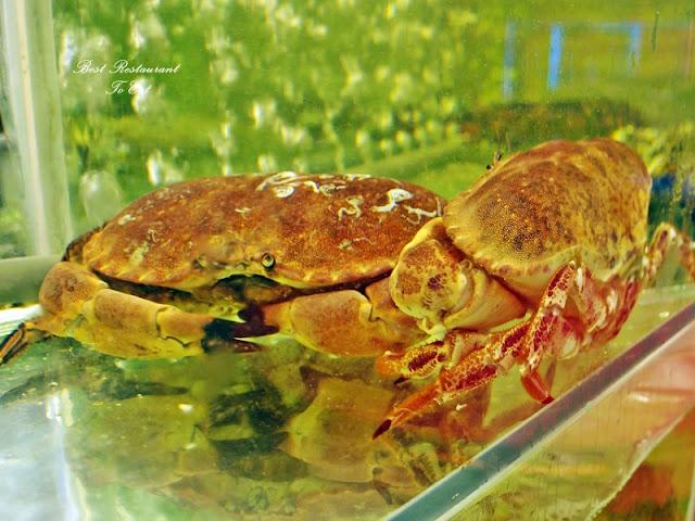 Ibrahims Fatty Crab Restoran Ampang Jaya Live French Crab