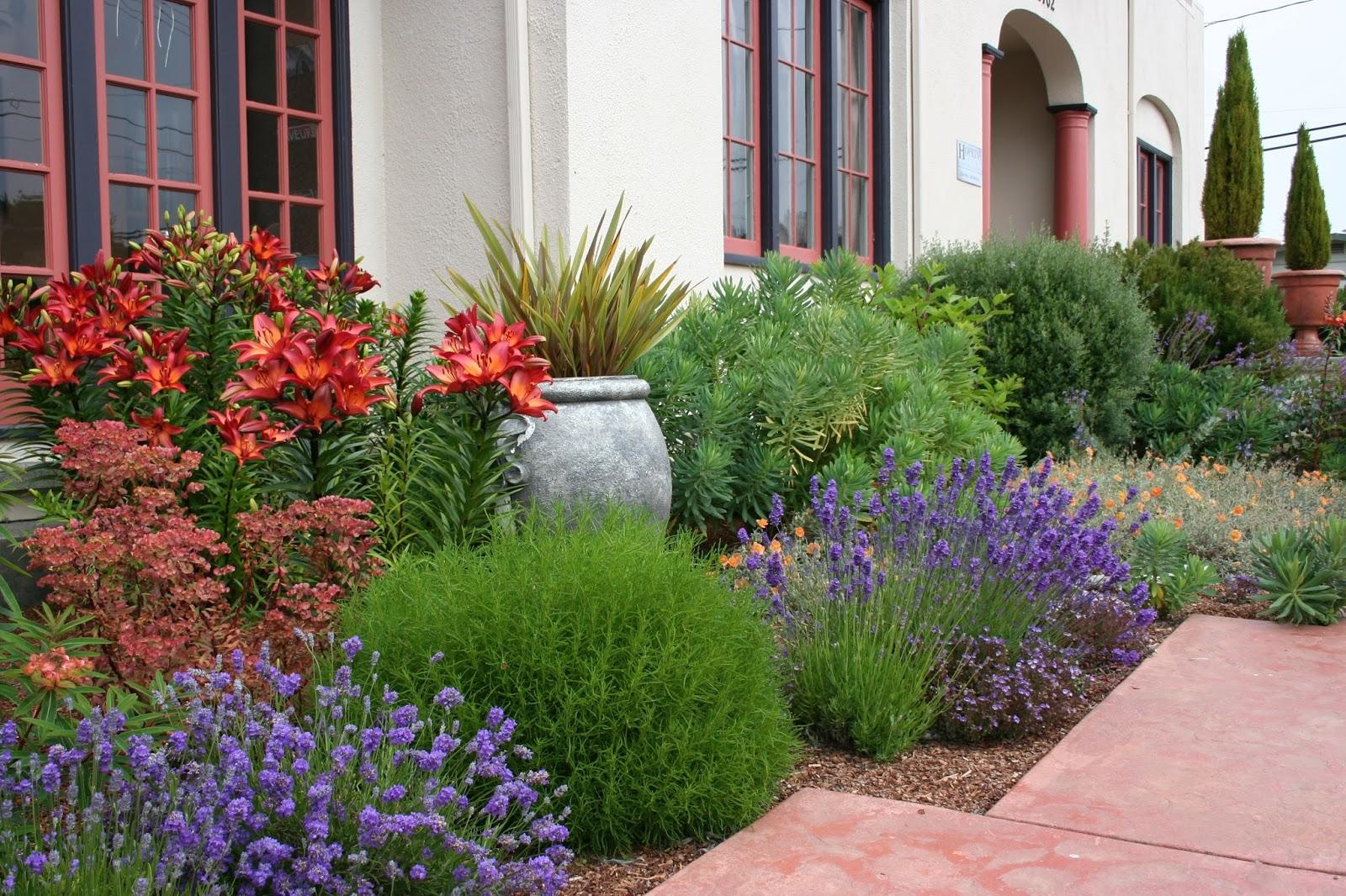 7 Hacks To Create A Mediterranean Style Garden: Dream Gardens: Stredomorská Záhrada V Našich Klimatických