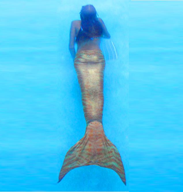 Mermaid Splash Graphic Design