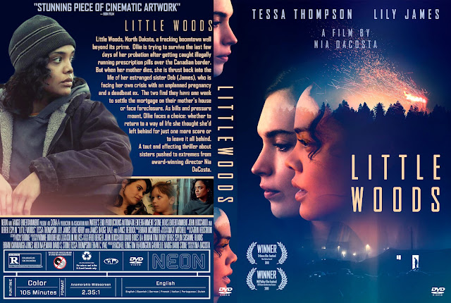 Little Woods DVD DVD Cover