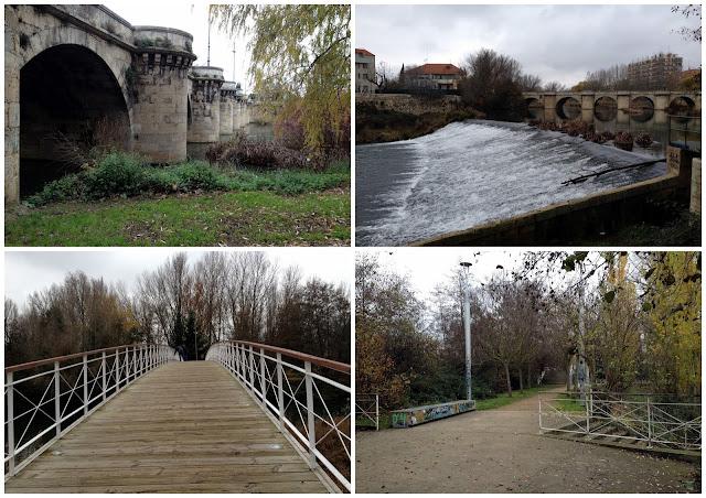 naturaleza en pleno centro de Palencia