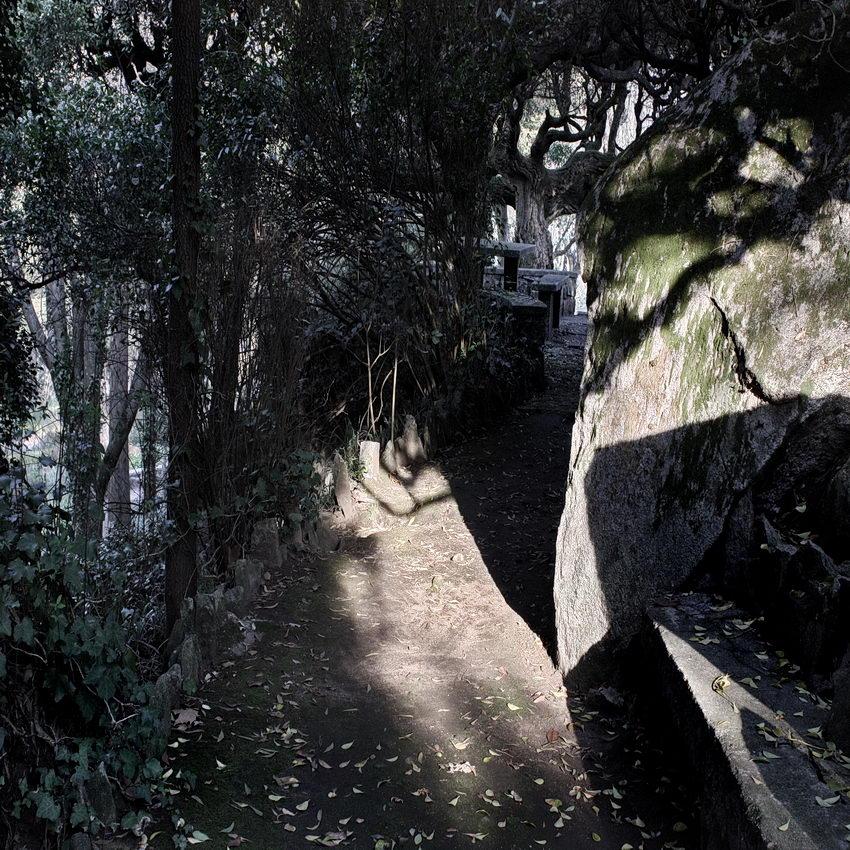 Caminho para a zona de merendas, sombrio e com forte iluminação em alguns lugares