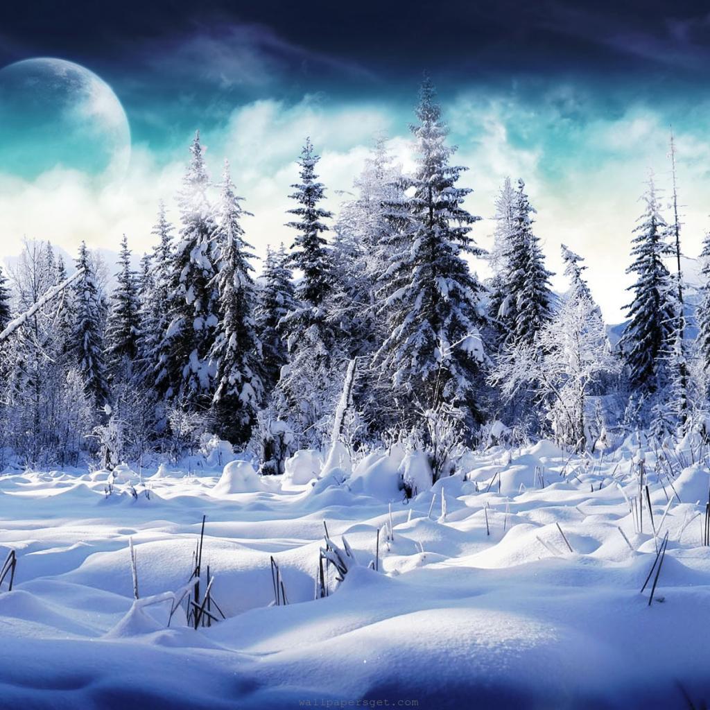 iPad Christmas Wallpaper 1024 X 1024 | Free iPad Retina HD ...