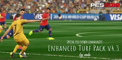 PES 2019 Enhanced Turf Pack v4.3 by Endo