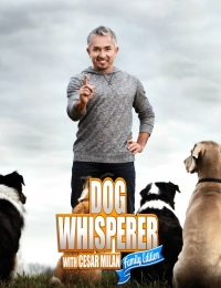 Dog Whisperer with Cesar Millan 1 | Bmovies