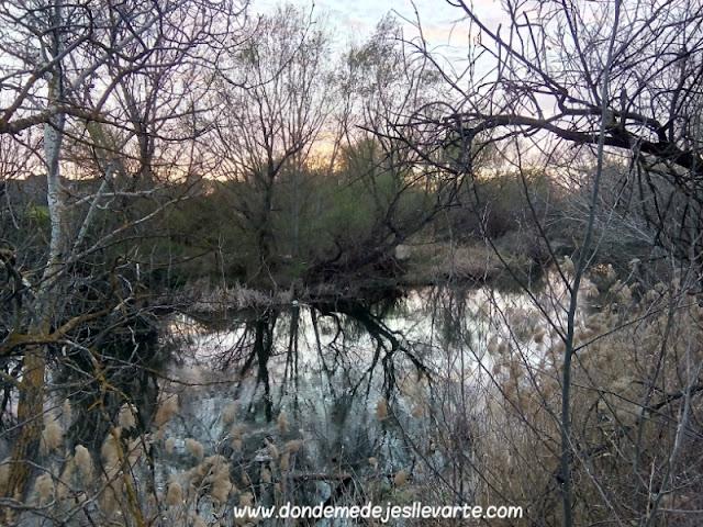 Atardecer en el Río Henares
