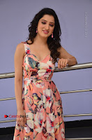 Actress Richa Panai Pos in Sleeveless Floral Long Dress at Rakshaka Batudu Movie Pre Release Function  0077.JPG