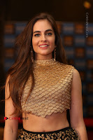 Actress Model Sarah Hopkins Latest Pos in Lehenga Choli at SIIMA Short Film Awards 2017 .COM 0025.JPG
